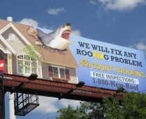 Tri-County Roofing Shark Week